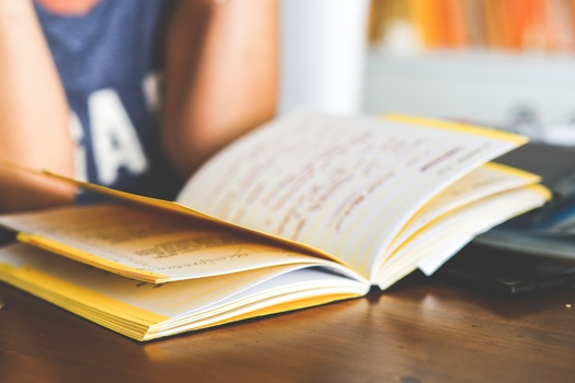woman-notebook-working-girl-medium